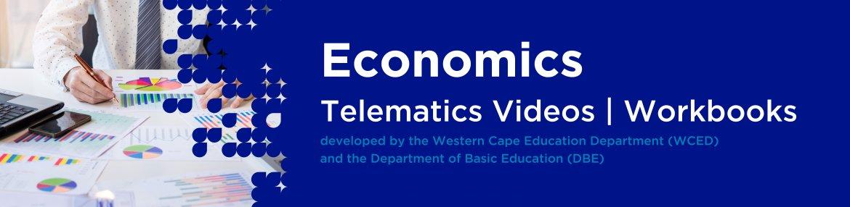Revision DVDs (Telematics) - Economics Grade 12