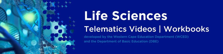 Revision DVDs (Telematics) - Life Sciences Grade 12