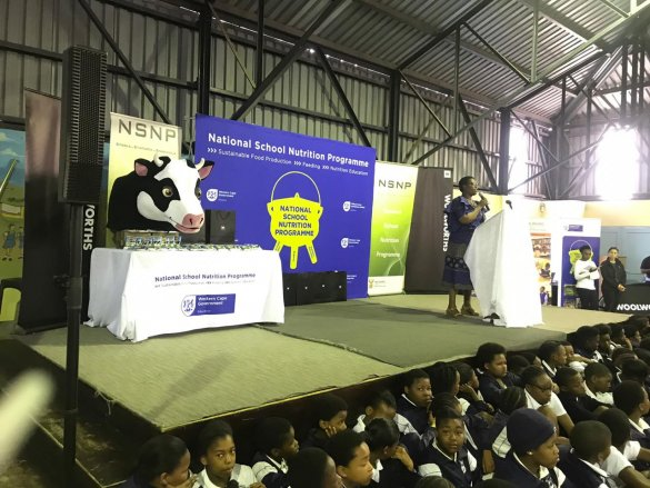 Lessons on World Milk Day