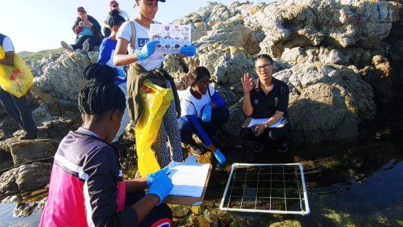 Action packed Marine Sciences weekend.