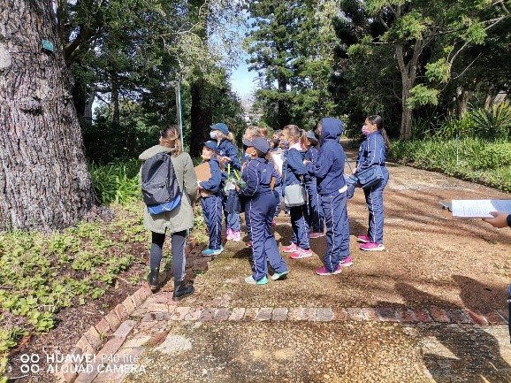 Children learn to save trees