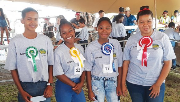 Calitzdorp learners display their skills at agriculture youth shows