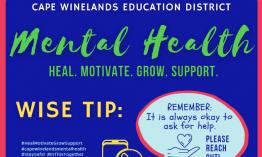 Promoting mental health in school communities